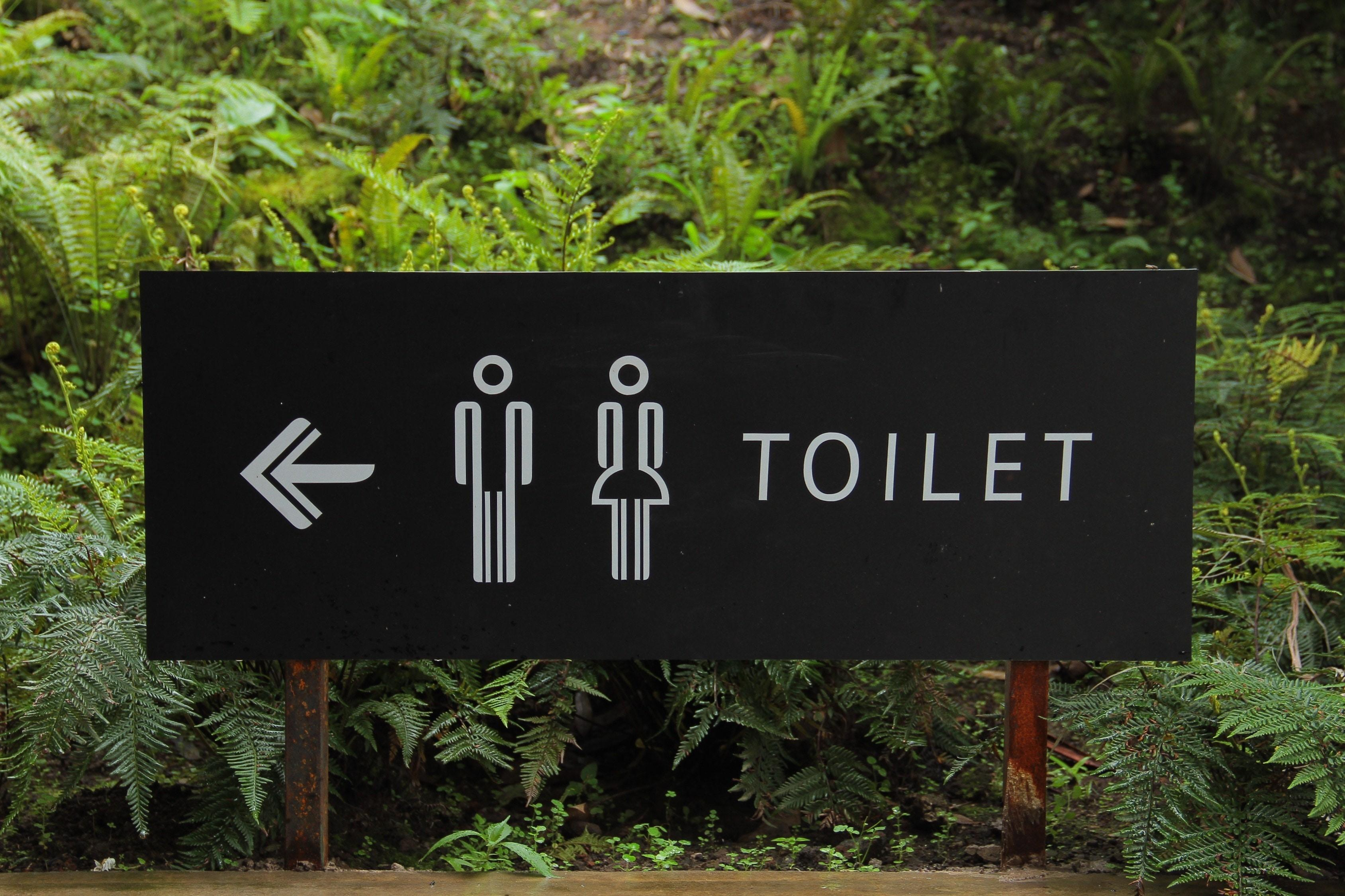 Preventing toilets problems with Plumbing Sales