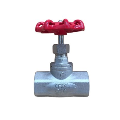 50mm Globe Valve 316 Stainless Steel F&F