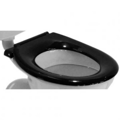 Caroma Caravelle Black Single Flap Commercial Toilet Seat Stainless Blind Fix Hinge 254017B