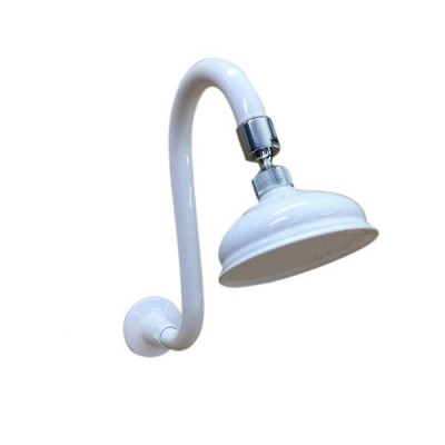 Traditional Curved Swan Neck Shower Arm and Rose White Chrome TP5929