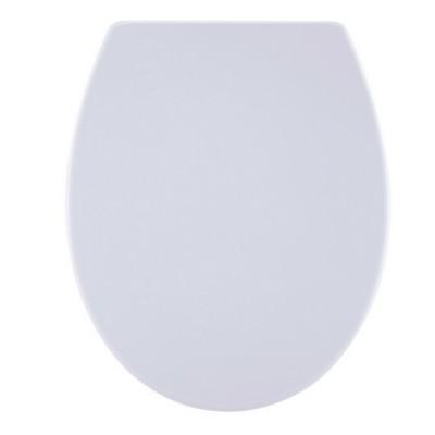 Haron Take Off Toilet Seat Slow Close Stainless Hinge White TS1900