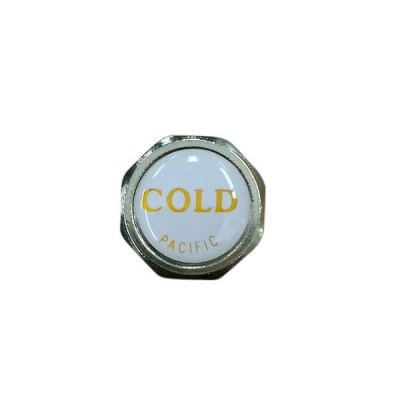 Pacific Tap Handle Button Cold White Gold 19mm X 5mm Deep TP9249