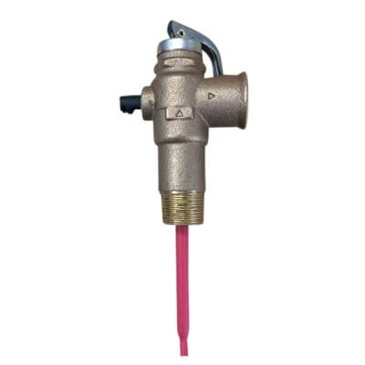 RMC HTE575-1 1400 Kpa 20mm Pressure Temperature Relief Valve HTE705